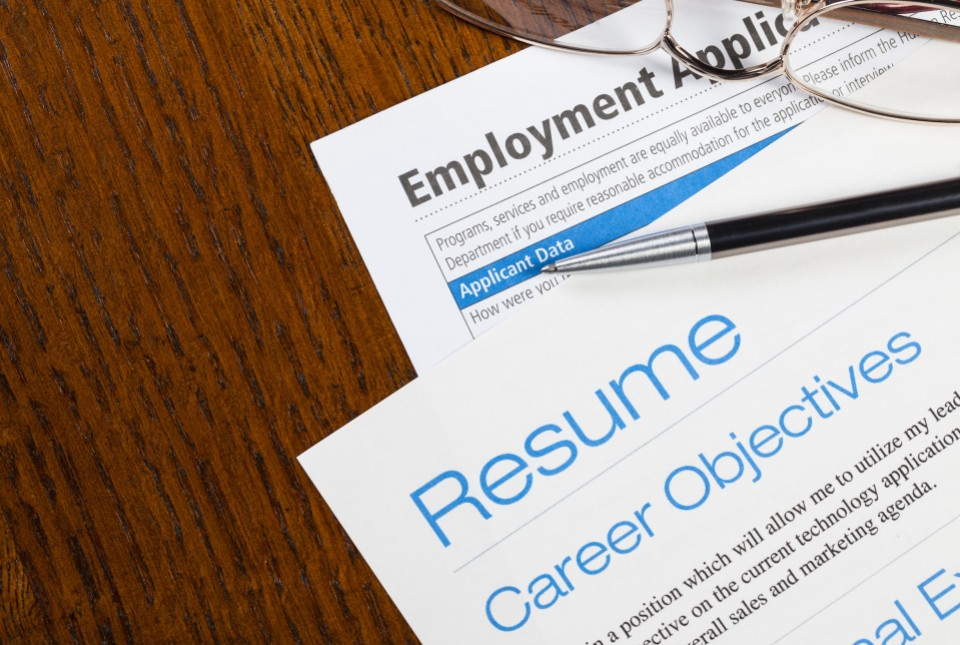 Services That Are Provided By The Professional Resume Writing Concerns U2013  Racing For Knowledge Gain