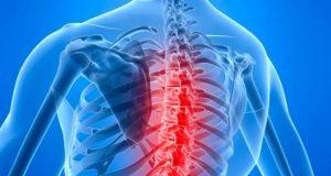 chiropractor hillsboro or