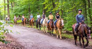 Horseback riding trails chester county